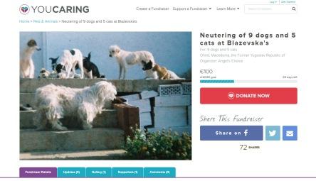 neutering fundraiser Blazevska