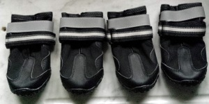 dog shoes bianca
