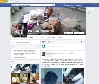 printscreen FB pagina 18112015 copy